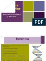 Diapositiva Genetica Medica Herencia Monogenica Autosomica