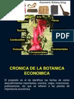 Botanica Economica PRIMERA CLASE