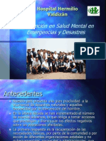4 Intervención Emergencias y Desastres Dra. Cueva Valdizan (1)