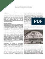 Evoluția parcelării în relație cu extinderea aglomerării urbane Timișoara