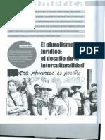 Walsh Pluralismo Juridico.nuevaAmerica2012