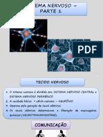 Sistema Nervoso Parte 1