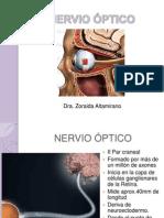 Nervio Óptico Zoraida Optom