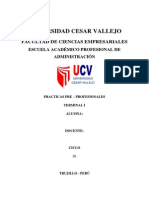 Informe de Practica Pre Profesionales Cv