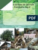 Propuesta Sistema de Gestion Ambiental Pianguita-Valle