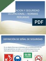 Se Alizacion -Seguridad - Normas Peruanas[1]