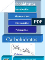 carbohidratos 1