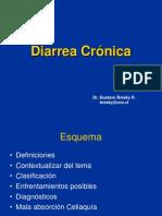 1.3.1 Sd. Diarreico Crónico'09 (1)