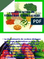 Clasificacion de Verduras y Hortalizas
