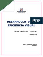 DESARROLLO EFICIENCIA VISUAL-MILLY LEONARDO AGUILAR.pdf