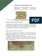 1 Tipos de Resinas de Intercambio Iónico