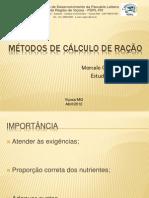 C%E1lculo de Ra%E7%E3o