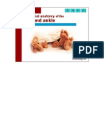 Anatomi Ankle 1
