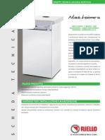 nuova insieme sr_rev7.pdf