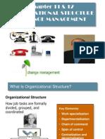 Change Management - IBA