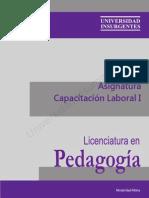 P04 Capacitación Laboral I