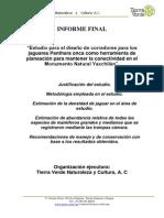 Informe Final Yaxchilan