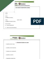 Anexo 10. Formato Informe de Epp y Pcar