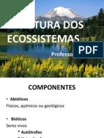 Aula Estrutura Dos Ecossistemas 2ª Etapa