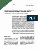 Aislamiento Bacillus (1)