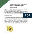 casoclinico_anestesiaepidural
