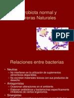 c 4 Microbiota Normal1