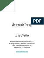 Lic. Mario Squillace - MdT
