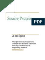 Lic. Mario Squillace - Percepción