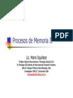 Lic. Mario Squillace - Procesos de Memoria II