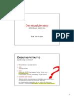 Desenvolvimento_delimitando o conceito.pdf