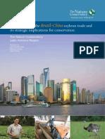 Brazil China Soybean Trade