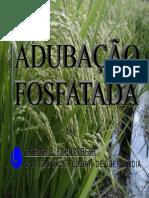 Work-Adubacao Fosfatada - Geral 23