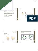 2 Estructura de Los Ácidos Nucleicos