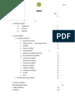 auditoria_GESTION_RRHH_MUNI_PUNO (Reparado) JHONY (1)