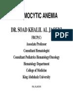 20589_normocytic Anemia [وضع التوافق]
