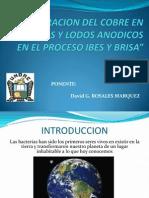 Ponencia Estudiantil - CERRO de PASCO
