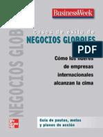20052014Casos de Exito de Negocios Globales