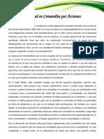 COMANDITA POR ACCIONES.docx