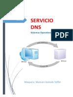 Informe Servicio DNS