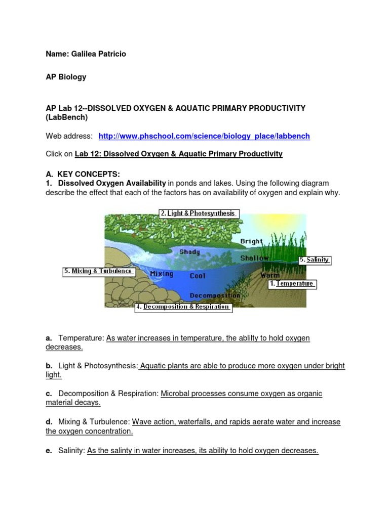 dissolved oxygen and aquatic primary productivity