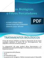 Filtro biológico