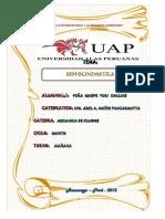 Peña Quispe Yuri Hidrocinematica