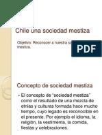 Chile Una Sociedad Mestiza