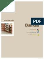 Diamond Logix Brochure Mar2011