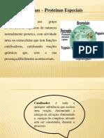 Bioquimica e Fisiologia Vegetal Aula Enzimas