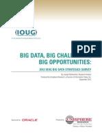 Ioug Big Data Strategies Survey
