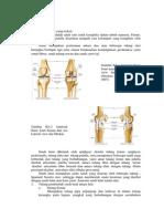 Anatomi Artritis Gout