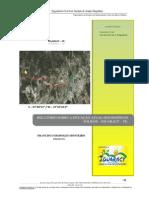Relatório_lixo_Iguaracy