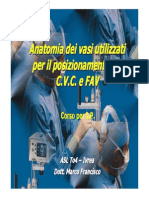 C.v.C. e FAV, Anatomia, Forse 2011