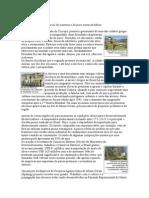 Oliveiras.doc